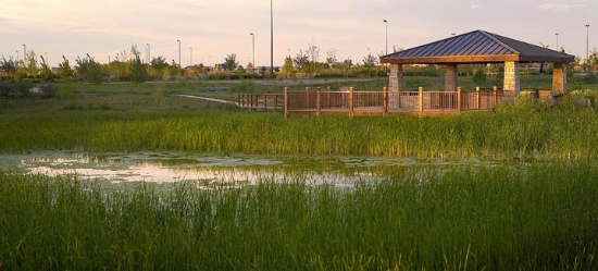 Wetland pond at Medical Center of the Rockies. Images courtesy of BHA Design.