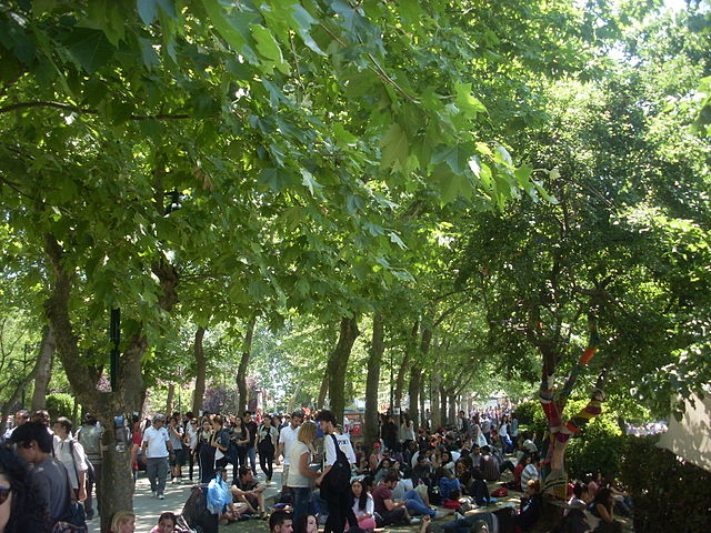 Taksim Gezi Park protests,People at Taksim Gezi Park on 3rd Jun 2013. Photo courtesy of WikiMedia Commons