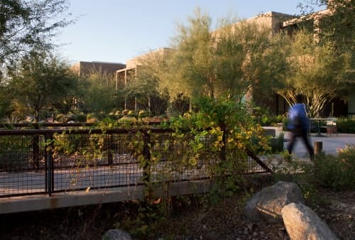 Arizona Cancer Center. Photo courtesy Ten Eyck Landscape Architects