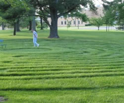 Labyrinth_Sister